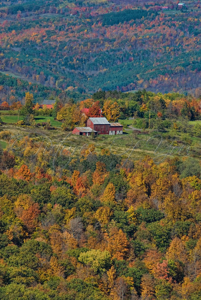 Nestled in the Catskills<br /> © Photograph by Angela M. Jorczak/Pictures of You, all rights reserved.
