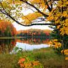 """""""Beautiful Autumn"""""""