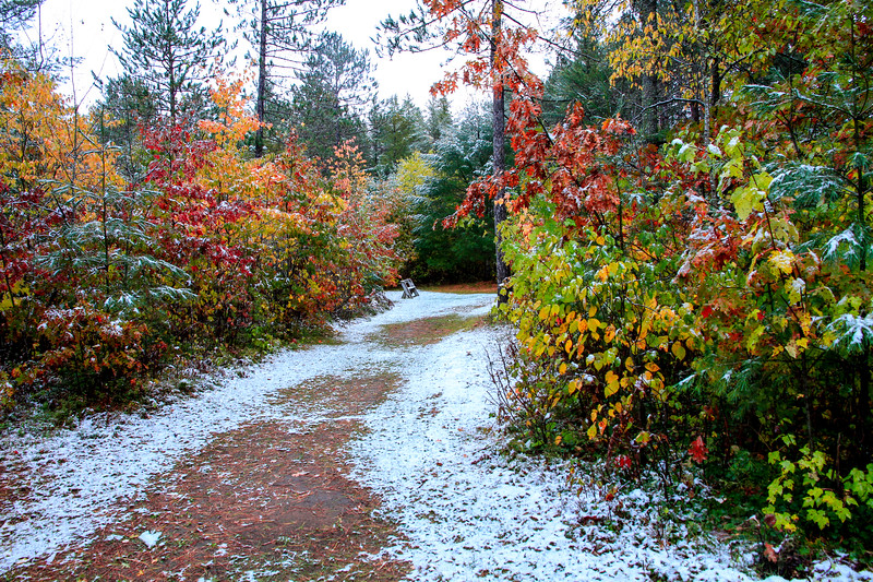 Early October Snow 3