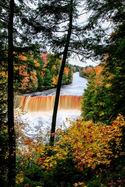 Fall at Tahquamenon Falls 8