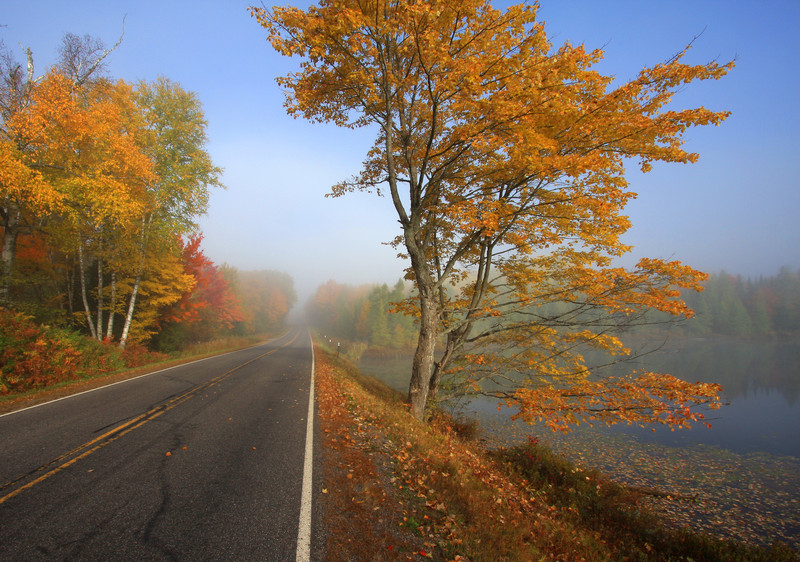 """  A Foggy Autumn Morning in Northern Wisconsin  """