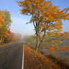 """""""  A Foggy Autumn Morning in Northern Wisconsin  """""""