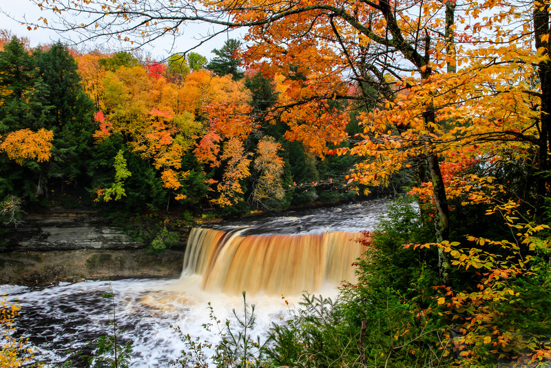 Fall at Tahquamenon Falls 2