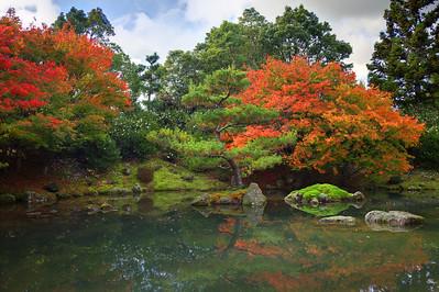 Autumn Japanese Garden, Hamilton Gardens, New Zealand