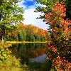 Autumn's  Delicious Autumn!
