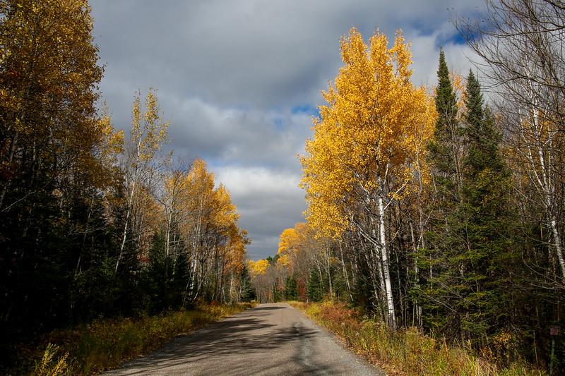Beautiful Backroads of Boulder Junction 7