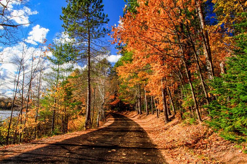 Autumn Jamboree 2