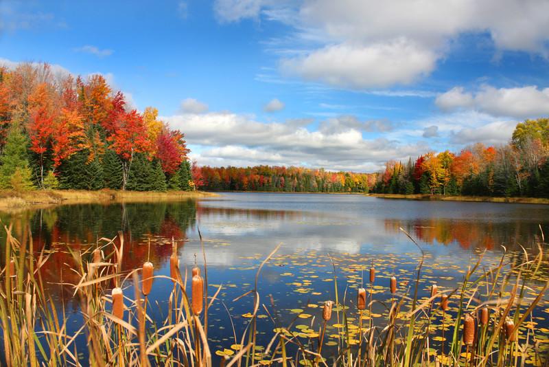 """Autumn's Magic Landscape"""