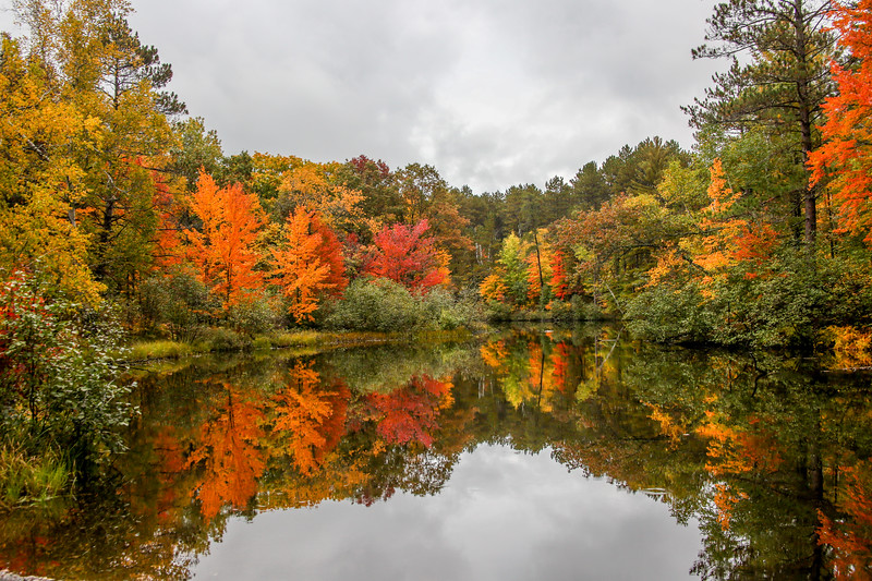 Autumn Color on the Manitowish 6