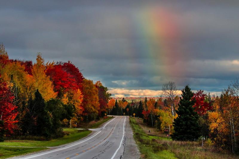 Autumns Rainbow of Colors