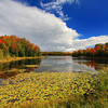 Autumn on Mabel Lake 2