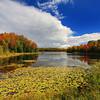 Autumn on Mabel Lake 2