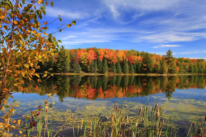 """September's Autumn Beauty"""