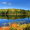 """Autumn Arrives"""