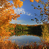 """""""Autumn's Beauty"""""""