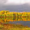 """  Autumn At It's Best Panorama  """