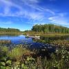 """Canoe Country"" - Manitowish River"