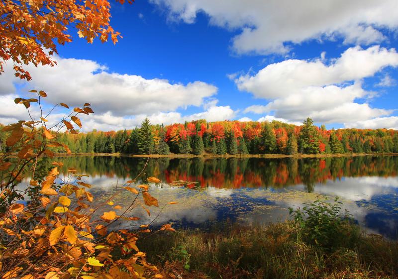 """ Fantastic Autumn "" 2  Boulder Junction Wisconsin"