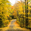 Colorful Country Roads 13