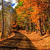 Autumn Jamboree 4