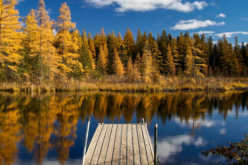 High Lake Golden Bonanza 6