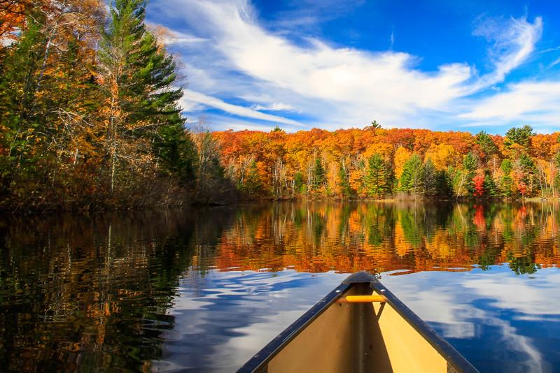 Autumn Joyride