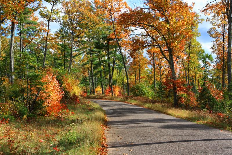 An Autumn Road Trip