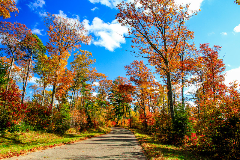 Autumn Around Every Corner