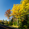 Beautiful Autumn Roads - Hwy B 7