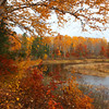 """  Rustic Autumn in Boulder Junction Wisconsin """