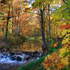 """Autumn on Alequash Creek"""