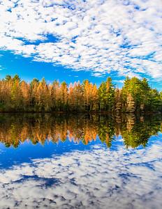 Autumn Dreamscape   2