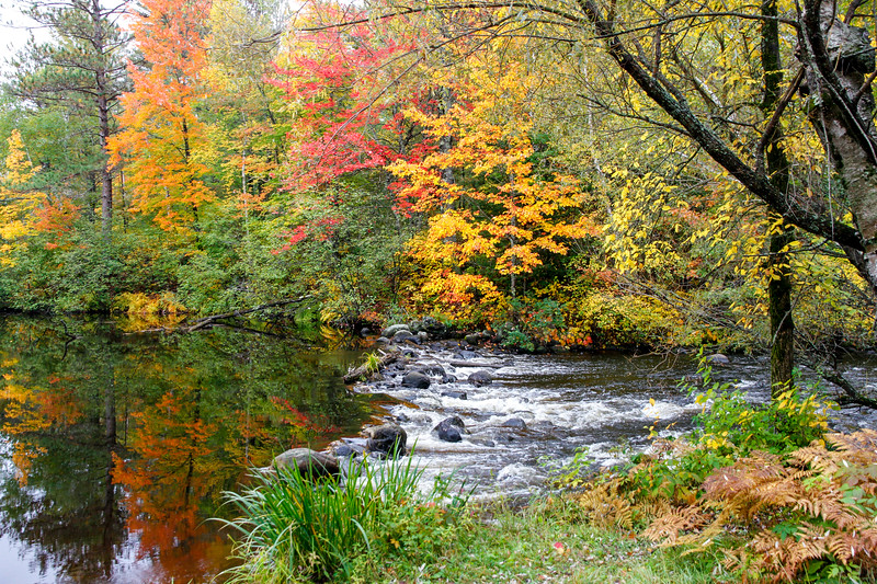Autumn Color on the Manitowish 2