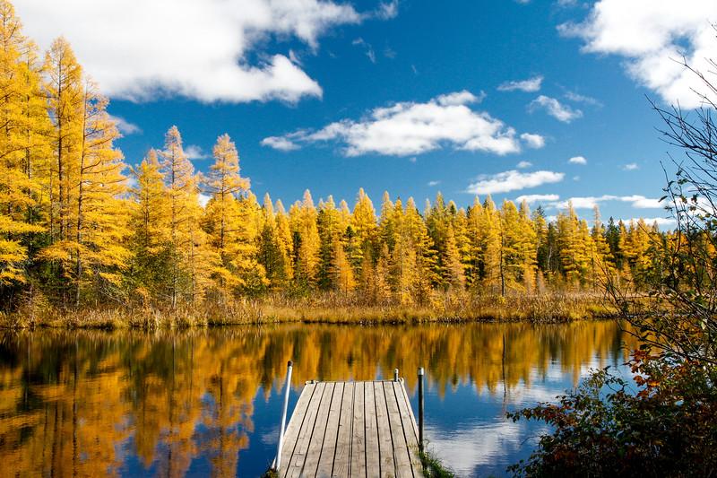 High Lake Golden Bonanza 1
