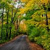 Autumn Roads - Nebish Lake Rd.