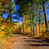 Autumn's Colorful Roads  3