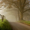 """""""Along The Road In Cades Cove"""".  This is the famous Spark's Lane in Cades Cove, Great Smoky Mountains.  Photographed on a foggy fall morning.  This image won first place in the Man And Nature category on Nature Photographers Network ( <a href=""""http://www.naturephotographers.net"""">http://www.naturephotographers.net</a>) in 2005."""