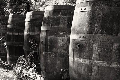 Mon Ami Winery, Port Clinton OH