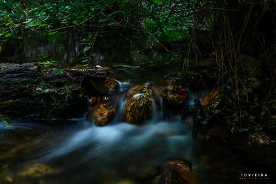 Rio Marnel