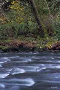 rio zela