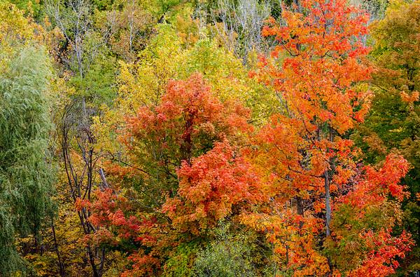 Fall Colors - Oct 2012