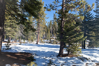 We found some open area's for our campsite, but snow was more plentiful as you continued on the trail.
