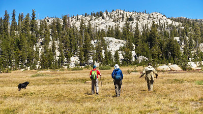 Hiking across Spring Meadow to find the trail south to Wire Lake.