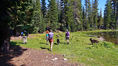 Off they go, while Zuri and I stick close to camp.