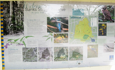 Banks Street Reserve - Signs, Plants & Flowers. (Point & Shoot Camera); Newmarket, Brisbane, Queensland, Australia; 24 September 2012. Photos by Des Thureson - http://disci.smugmug.com.