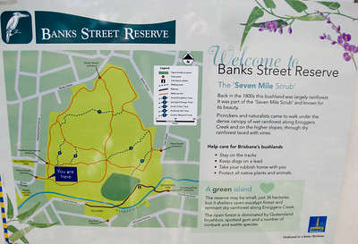 Southern End - Map - Banks Street Reserve - Signs, Plants & Flowers. (Point & Shoot Camera); Newmarket, Brisbane, Queensland, Australia; 24 September 2012. Photos by Des Thureson - http://disci.smugmug.com.