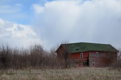4-20-13 nature barns4-20-1_2725