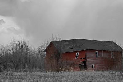 4-20-13 nature barns4-20-1_2725B&W clr copy