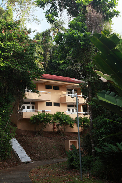 The dorm I stayed in on Barro Colorado Island, Panama.  One morning the howler monkeys were in the trees beside the building and sounded like they were in my room.