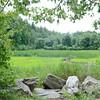 Scenery at Bartlett Pond in Lancaster after the dam removal and Wekepeke Brook Restoration. SENTINEL & ENTERPRISE / Ashley Green